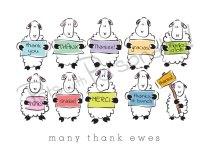 Many thank ewes landscape